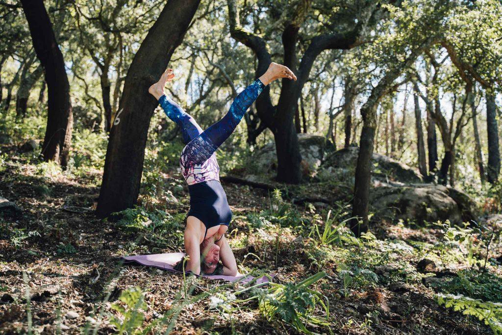intent 7 Vital principles Vijanna Yoga